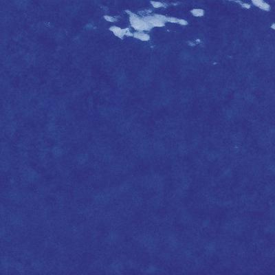 blu delft